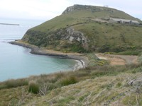 Taiaroa Head near Dunedin