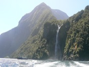 One of numerous Milford Sound waterfalls