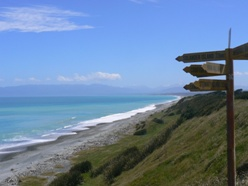 New Zealand's South Coast at Te Waewae Bay